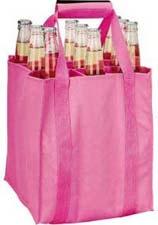 9支装啤酒袋